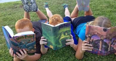 Criancas-livro